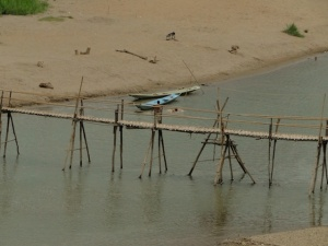 bamboo bridges