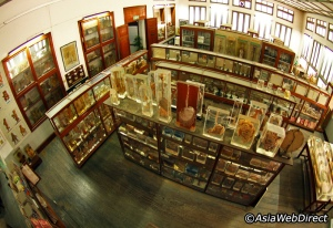 bangkok-forensic-museum