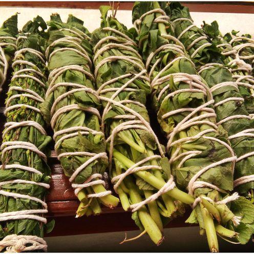Maço de ervas frescas
