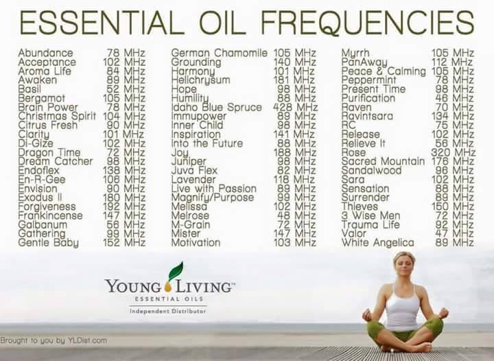 Frequencia Oleos Essenciais - young living