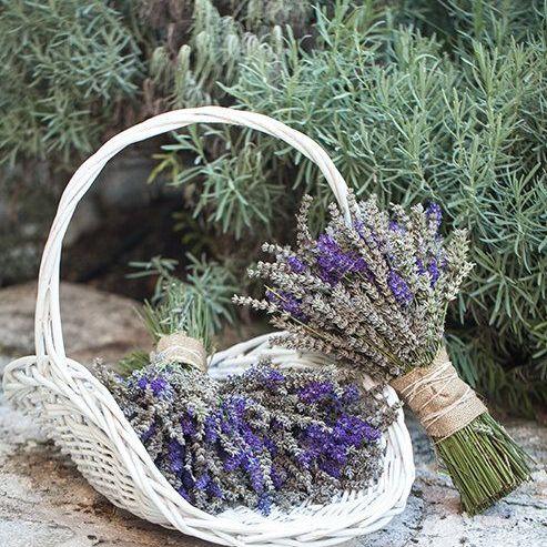 óleo essencial de lavanda mosaico natural